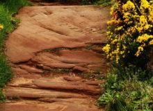 Дорога в лето из песчаника