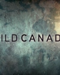 Дикая Канада