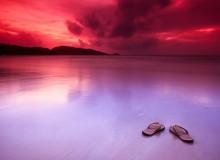 Отпускная идиллия. Фото: Hamad Darwish