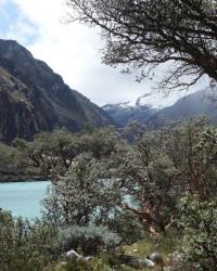 Peru (71)