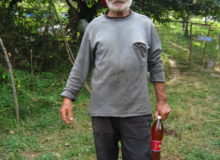 The owner of the apiary