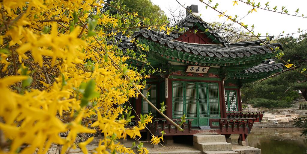 Сеул, Корея, гид, экскурсия, Юксам-Билдинг, Чонно-гу, Чунгу, Сеул-Инчхон